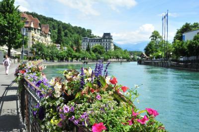 スイス花とハイキングの旅トゥーン