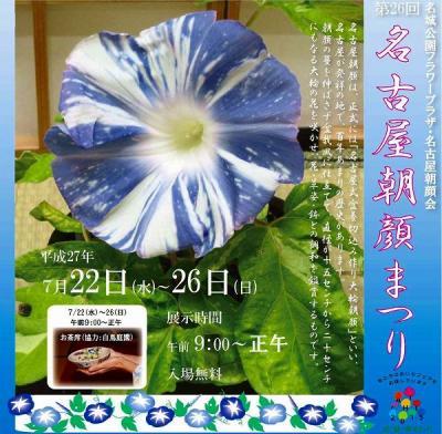 「名城公園・名古屋朝顔まつり・夏の朝を彩る大輪の花」