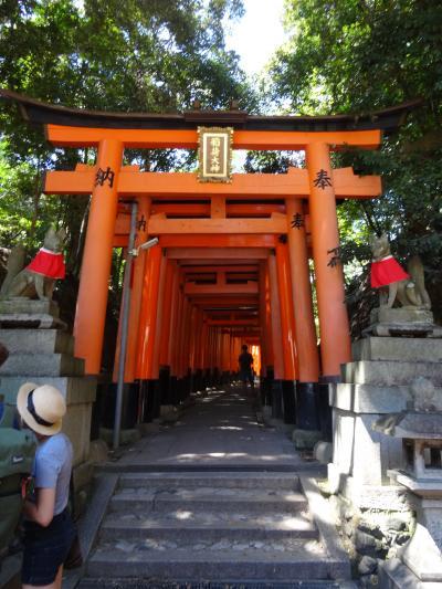 2015年7月 トリップアドバイザー「行ってよかった外国人に人気の日本の観光スポット」2年連続1位の伏見稲荷大社と真夏の稲荷山ハイキング