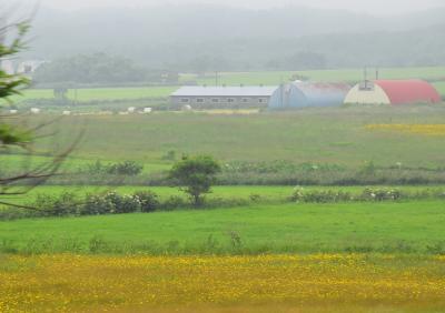 天塩川沿いに走り、原野と牧場が眺められる宗谷本線の旅(北海道)