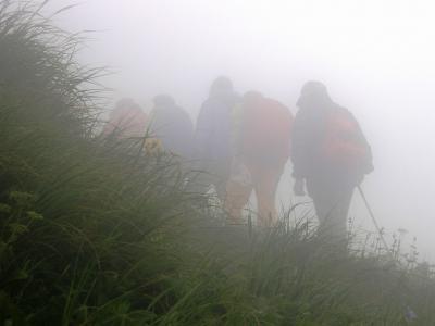 霧の秋田駒ケ岳を高山植物を愛でながら完歩