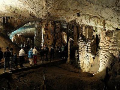 ★スロベニアあちこち(2)地底の大芸術ポストイナ鍾乳洞へ