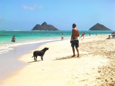 ラ二カイビーチで遊びノースショアーを巡る。