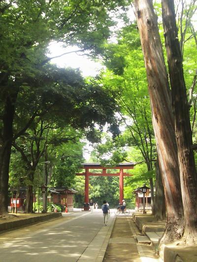 うさぎの調神社、緑の中の氷川神社、うさぎ守りもある神田明神