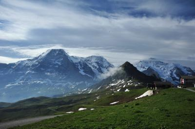スイス花とハイキングの旅メンリッヘン