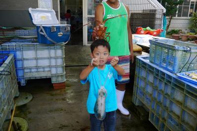真珠取り出し体験と私と息子の絶対おすすめ漁業体験!