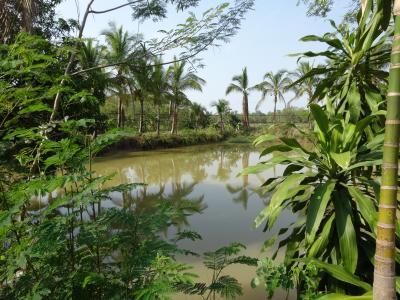 タイの東北地方、ナコンパノム