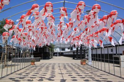 江田島・周防大島と金魚ちょうちんの柳井を巡る旅(2日目)