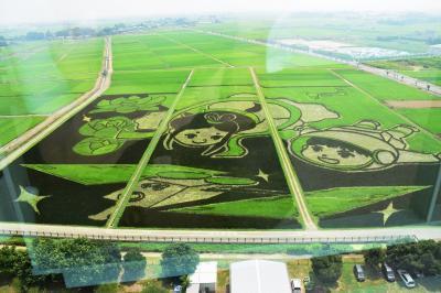 【1日目-1】盆休みパワー充電 ギネスブックに認定された世界最大の田んぼアート in 行田 2015