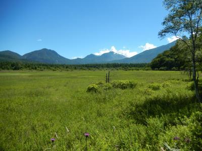 日光・華厳の滝~さかなと森の観察園~戦場ヶ原・小田代ヶ原~湯ノ湖周辺を歩きました