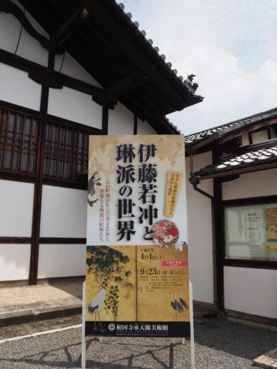 相国寺承天閣美術館・神光院・北山紅茶館へ