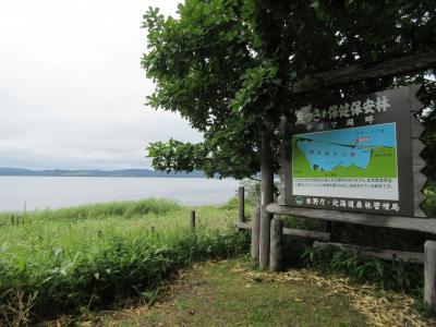 2015 8月 北海道 東へ東へ サロマ湖へ