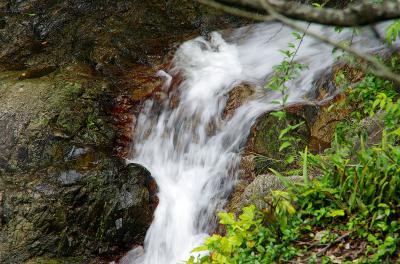 アラフィフオヤジの無謀な挑戦~如意ケ滝