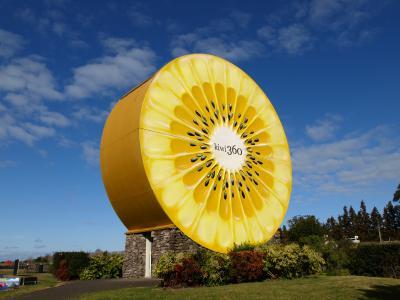 ニュージーランド北島ドライブ(3)ネイピアでワインとテ・プケ観光にマウントマンガヌイ 2015年7月