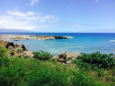 2015年8月ハワイ旅行4日目