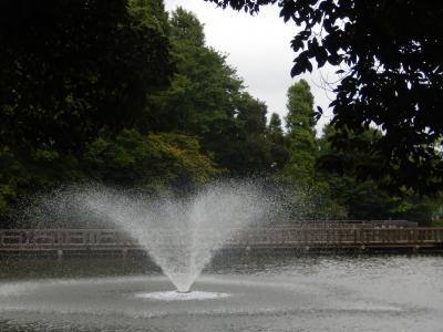 東京吉祥寺・井の頭公園を散策