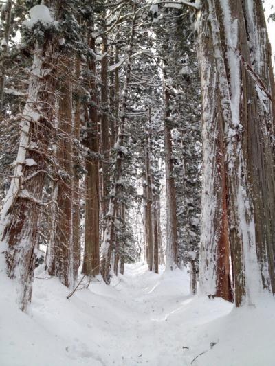 父プレゼンツ 今年は兎に角寒かった毎年恒例正月旅行【2】