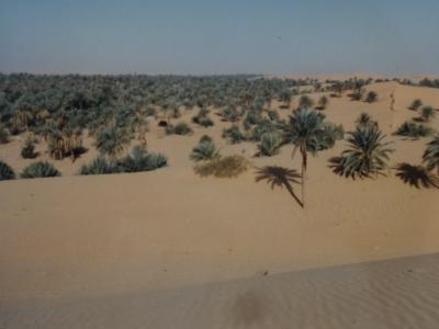 (10)1987年サハラ砂漠縦断 西アフリカと中央アフリカ横断の旅12か国64日間⑩アルジェリア(インサラー)