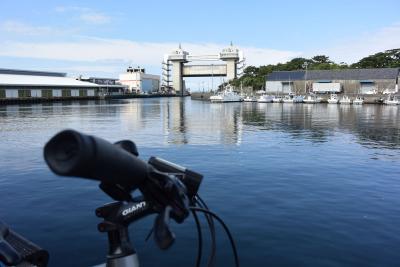 自転車でGO! 2015.08.29 富士・沼津市内をウロウロ…
