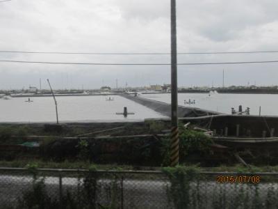台湾・高雄の4日間(32)屏東のウナギ養殖池。