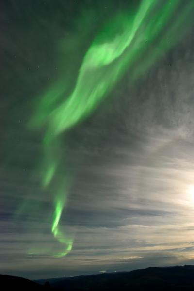 オーロラとツンドラ紅葉を求めて極北の大地ユーコンを行く (1)オーロラ編