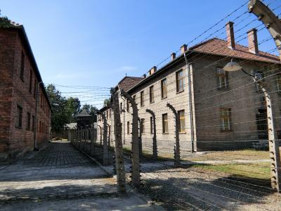 ベルリンから初めての東欧ポーランドへ、そしてトランジット中にアムステルダムへ(⑦アウシュヴィッツ=ビルケナウ強制収容所)