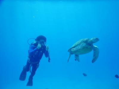 ハワイでダイビングライセンス、テニス、体幹トレ