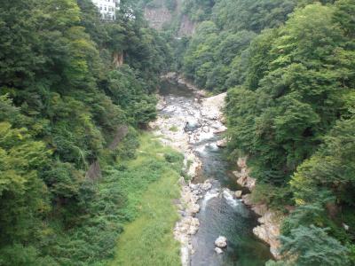 群馬県老神温泉山楽荘に行った。