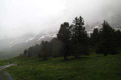 スイス旅行 前半は晴れ 後半は雨-13 雨中のハイキング-クライネシャイデック