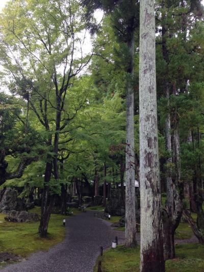 北庭 ☆ 日本庭園 ☆ しょうざんリゾート