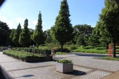 東京下町の公園、猿江恩賜公園