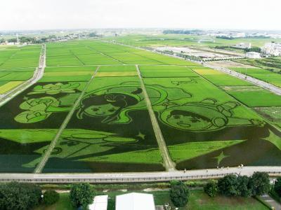 ギネス世界記録に認定された「田んぼアート」を見てきました。