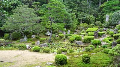 湖東・湖北・若狭・丹波の庭園紀行(02) 安養寺の庭園鑑賞