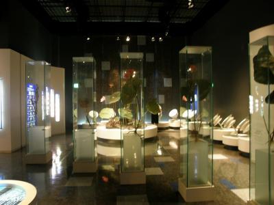 田んぼアートを見る前に「古代蓮会館」の展示室を見てみよう。