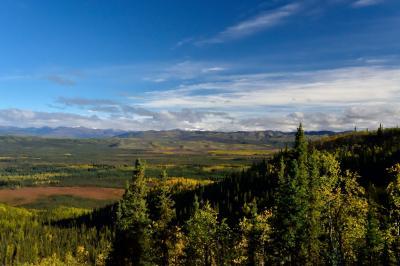 オーロラとツンドラ紅葉を求めて極北の大地ユーコンを行く (4)クロンダイクハイウェイドライブ編