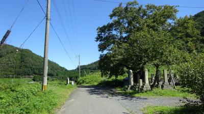 湖西MTB行「清水の桜から今津へ ついでに白谷温泉へも」