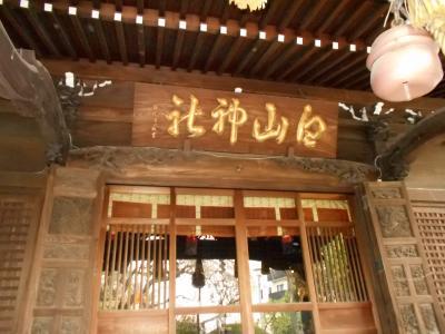 武蔵白山 五代将軍家綱と共に生母桂昌院の篤い帰依を受けた白山神社散歩
