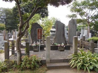 武蔵駒込 将軍家光が立ち寄り飲んだ茶から「お茶の水」となった高林寺散歩