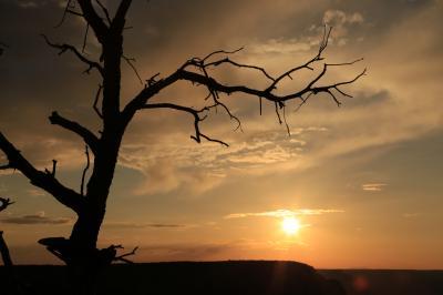 想像以上のスケールに大感激!グランドサークルの旅 (3)夕日も朝日も素晴らしかったグランドキャニオン