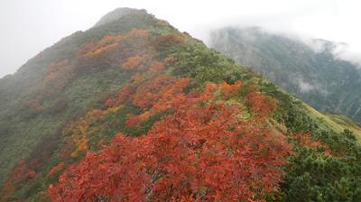 紅葉の飯豊山 飯豊温泉からダイグラ尾根を登り丸森尾根を降る周回ルート