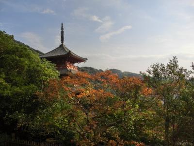 ◆地元探訪◆神戸唯一の国宝建造物、太山寺