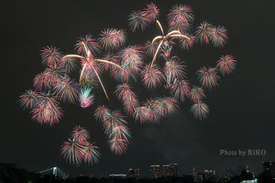 初めての東京湾大華火祭