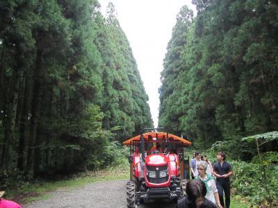 第30回田沢湖マラソンを挟みつつ、岩手観光を楽しんできました。