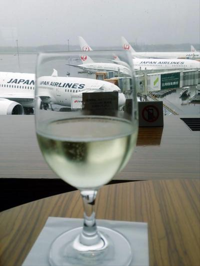 2015秋ついにインド#2 JAL787プレミアムエコノミーでインド・デリーへ