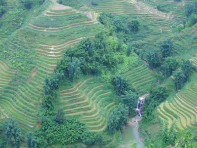 ベトナム3日目 棚田を見に行く SAPA  から LAOCHAI ラオチャイ村 へ トレッキング