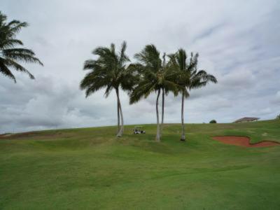 2010 ハワイ 2日目