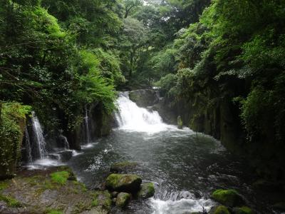 テーマがあると、旅行はワクワクしてくる~ ♪♪ 2つの祭りを見た後は、天然クーラーの菊池渓谷で涼もう ♪♪