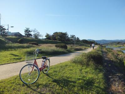 自転車で巡る♪秋の京都