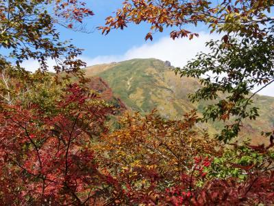 今年二度目の紅葉もきれいだった! 谷川岳登山!