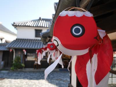 山口県柳井市の金魚ちょうちんに会いに♪